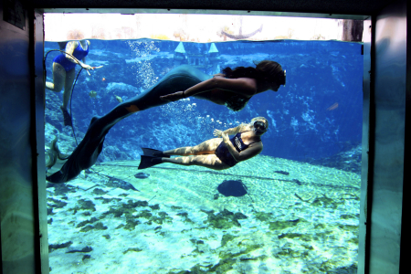 Former American Idol contestant Melissa McGhee, center, practices her mermaid swimming technique with the help of Mermaid Manager Vicki Monsegur, top left, and Mermaid Mayor Robyn Anderson at Weeki Wachee, Fla.